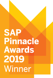 sap pinnacle2019 win rgb lg